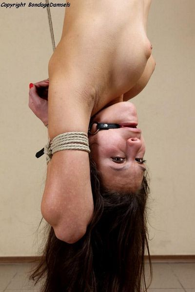 Bondage Damsels videos